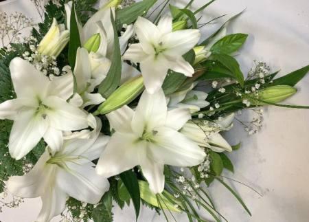 Florist Tamworth | Aunty Jax | Flowers Delivered on mn flower, dz flower, sd flower, va flower, ca flower, uk flower, pa flower, ve flower, na flower, ls flower, vi flower, sc flower,